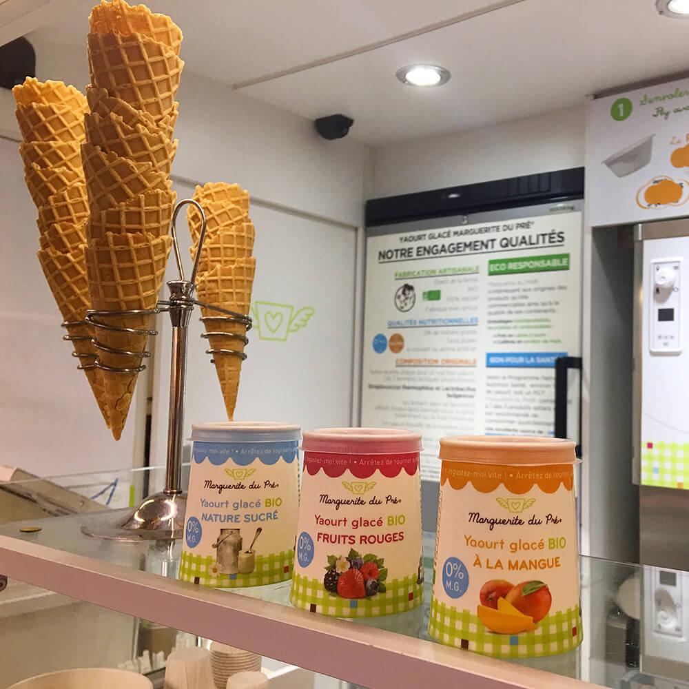 concept yaourt glacé bio food truck