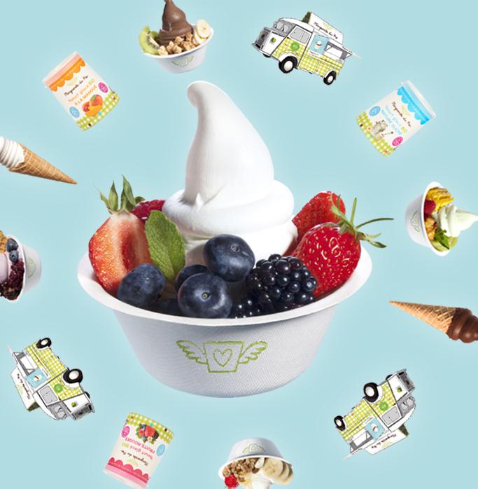 yaourt glacé bio en pot